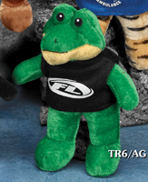 6 inch Thrifty Stuffed Alligator with custom printed t-shirt.